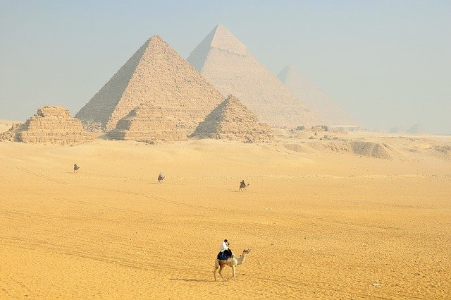velbloud u pyramid