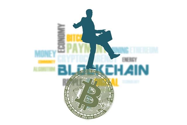 podnikání v měnách