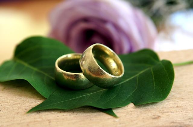 Snubní prstýnky na zelených listech